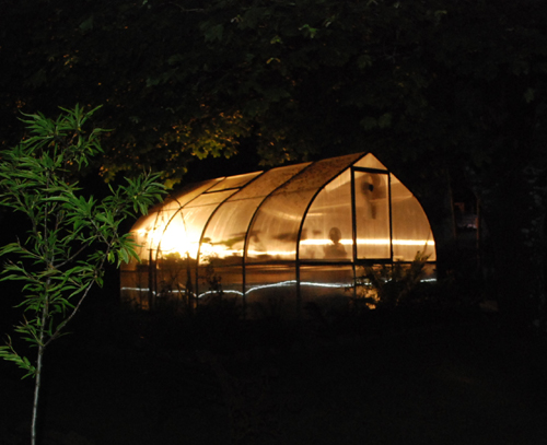 Riga greenhouse at night