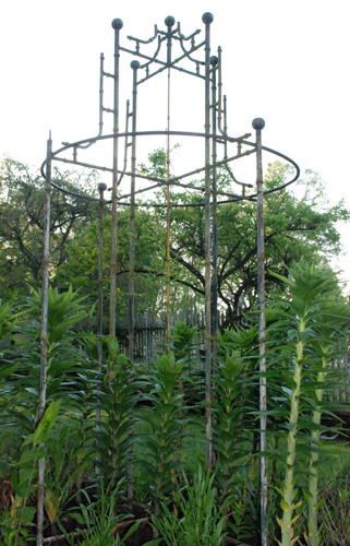 iron trellis from Meier & Frank store