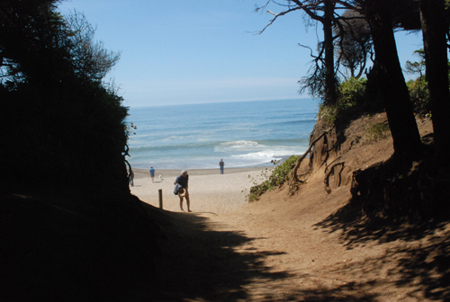 park trail to beach
