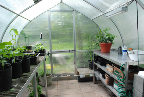 Riga greenhouse interior