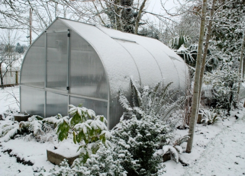 greenhouse in the snow