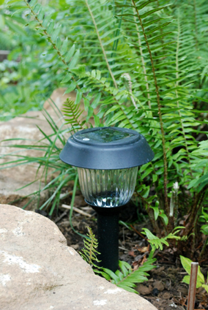 solar light positioned