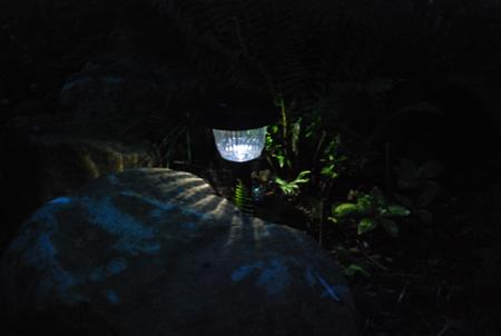 solar garden light at night