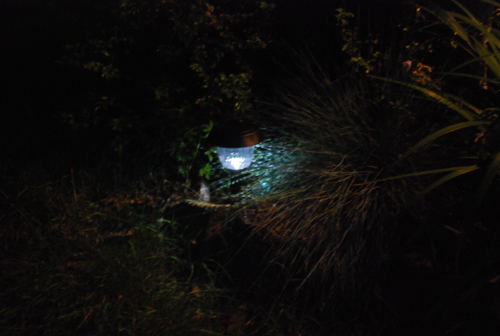 single solar garden light
