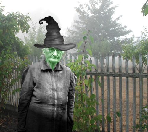 witch Tillie