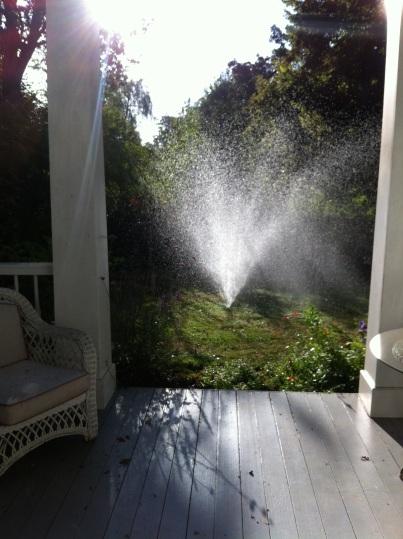 sprinkler east