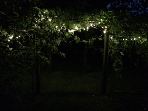LED lights outside summer