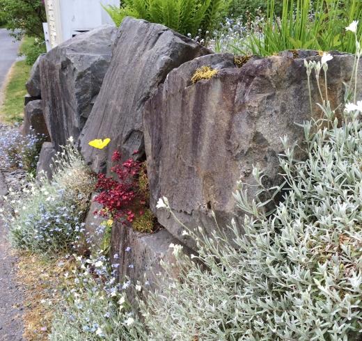 stones, Sitka